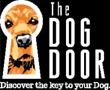 Dog Training & Dog Behavior Experts in Asheville NC